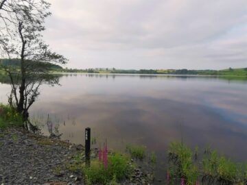 Angling Lough Muckno photo